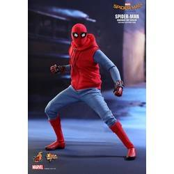 Spider-Man (Homemade Suit Version)