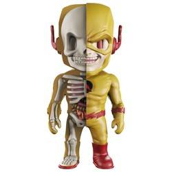XXRAY Reverse Flash