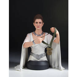 Leia Hero of Yavin